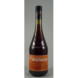 Pommeau de Normandie AOC - Bouteille de 70cL