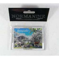Magnet Normandie argent scintillant